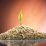 Пеллеты топливные — изготовление, преимущества и использование
