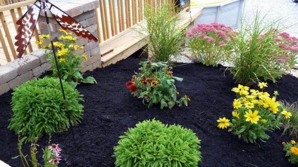 повторное мульчирование почвы