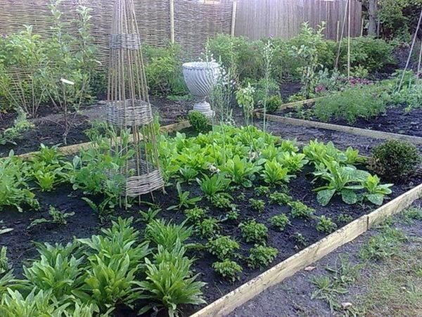 традиционный дизайн вашего сада