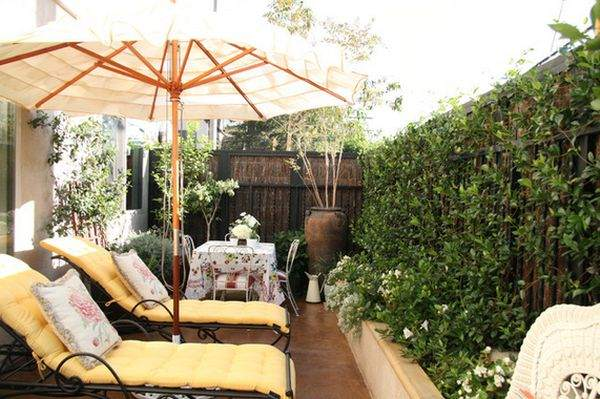 Эти растения делают атмосферу дворика более привлекательной и расслабляющей.