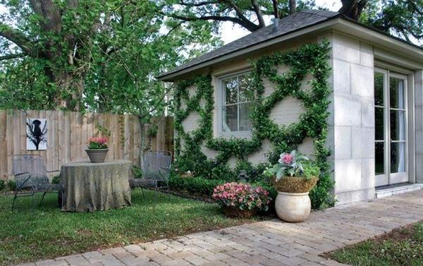 Виноградные лозы можно выращивать по шаблону и придавать им форму или узор.