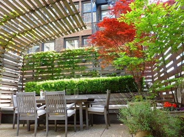 Вьющиеся растения позволяют создать зеленый оазис в центре города.