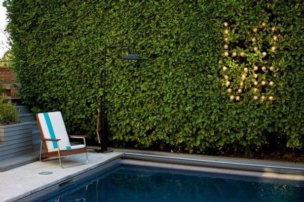 Добавьте к зеленой стене собственные штрихи и персонализируйте декорации.