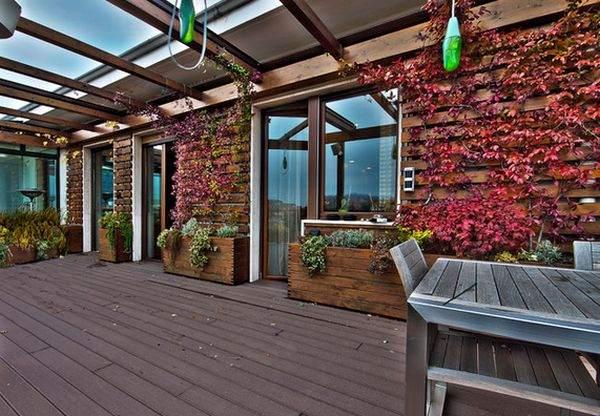 Вы также можете пустить растение виться по стенам вашего дома.