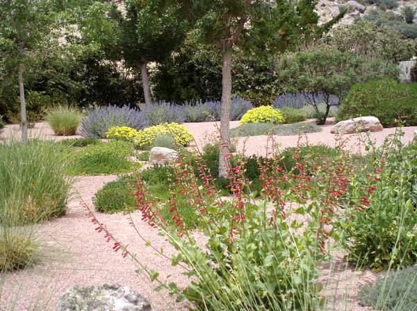 декоративный сад (10)