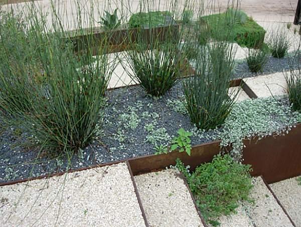 декоративный сад (3)