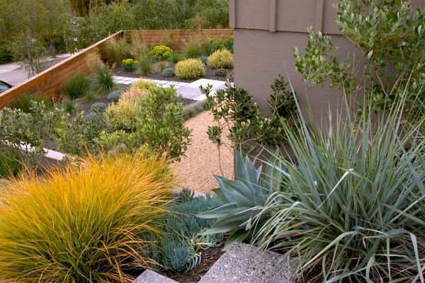 декоративный сад (4)