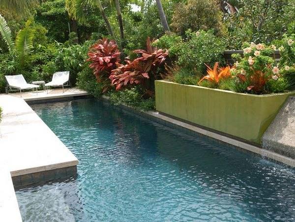 При помощи растений вы сможете превратить ваш бассейн в крошечный тропический остров.