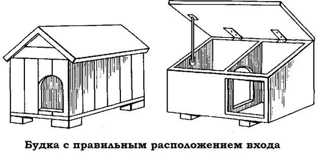 shema-sobachey-budki