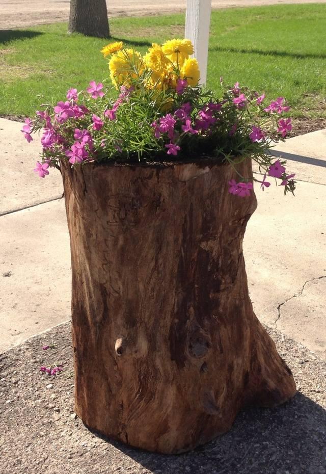 Цветник на пне срезанного дерева
