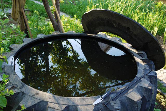 Бассейн и старой покрышки своими руками